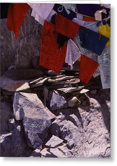 Tibetan Buddhism Greeting Cards - Tibetan Prayer Flags Behind the Potala Palace Greeting Card by Anna Lisa Yoder