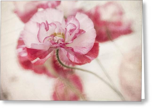 tickle me pink Greeting Card by Priska Wettstein