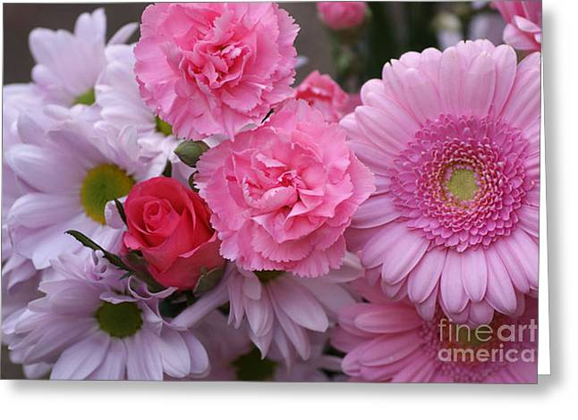 Recently Sold -  - Rose Petals Greeting Cards - Tickled Pink  Greeting Card by Carol Lynch