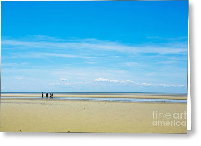 Cape Cod Bay Greeting Cards - Tidal Flats of Cape Cod Greeting Card by Diane Diederich