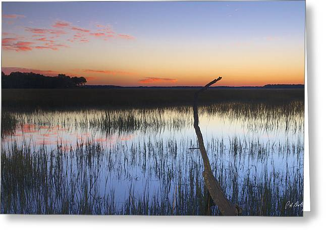 Beaufort County Greeting Cards - Tidal Marsh Greeting Card by Phill  Doherty