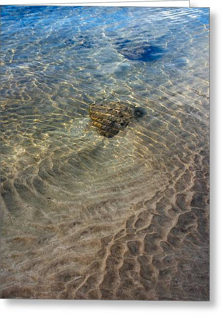 Tidal Photographs Greeting Cards - Tidal Pool 2 Greeting Card by Trever Miller