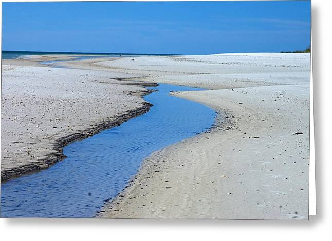Tidal Pools Greeting Card by Susan Leggett