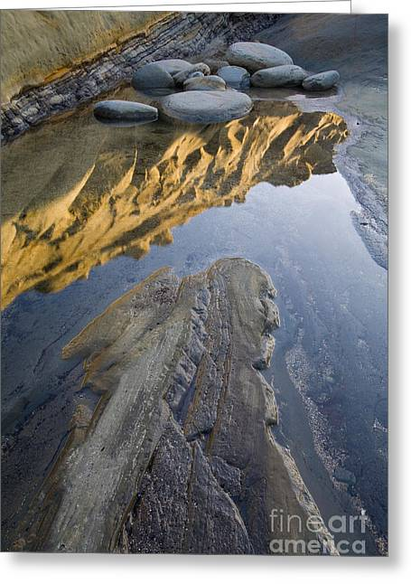 Ocean Shore Greeting Cards - Tide Pool Greeting Card by Sean Bagshaw