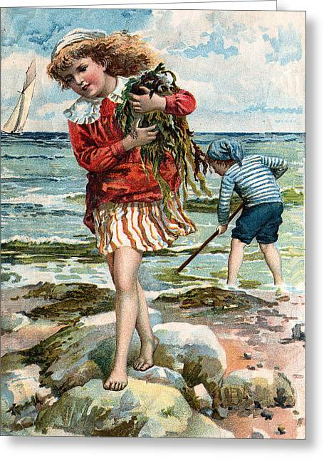 Little Boy Greeting Cards - Tide Pools AT The Beach Greeting Card by Unknown