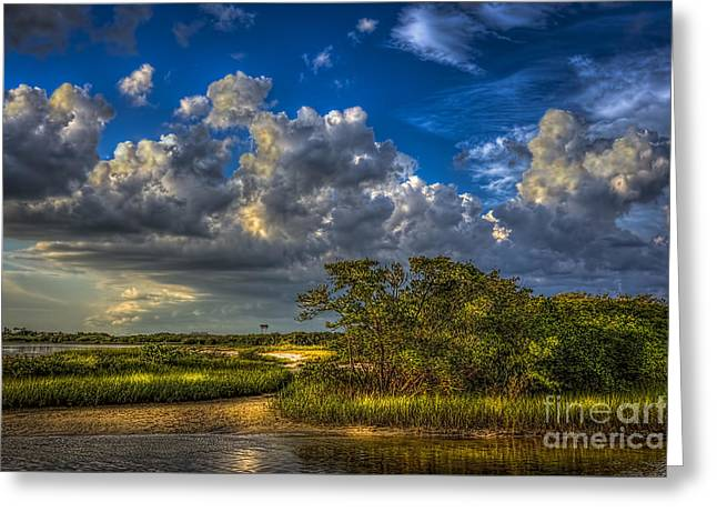 Tide Water Greeting Card by Marvin Spates