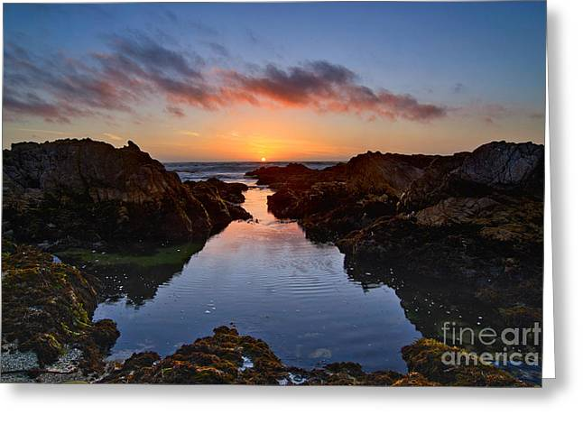 Pacific Grove Beach Greeting Cards - Tidepool Sunset - Rocky Asilomar Beach in Monterey Bay Greeting Card by Jamie Pham