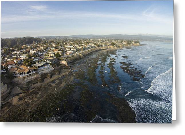 Santa Cruz Surfing Greeting Cards - Tidepooling Greeting Card by David Levy