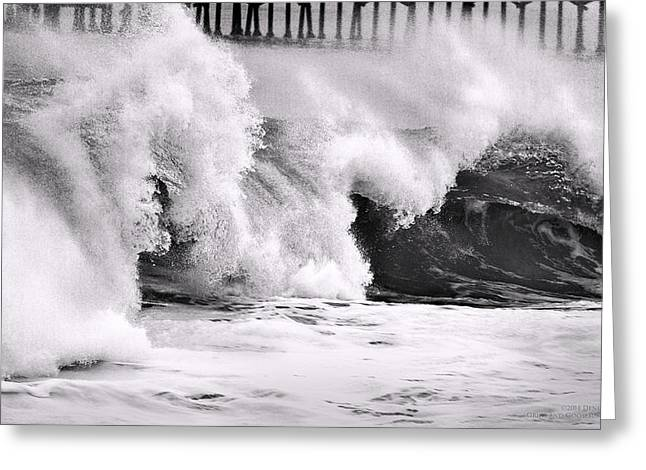 Recently Sold -  - California Beach Art Greeting Cards - Tides Will Turn bw By Denise Dube Greeting Card by Denise Dube