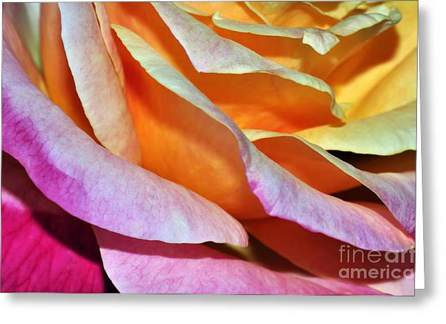 Pink Gold Flora Greeting Cards - Tiered Petals Greeting Card by Kaye Menner