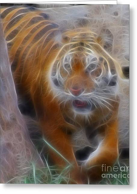 Gingrich Photography Digital Art Greeting Cards - Tiger-5362-Fractal Greeting Card by Gary Gingrich Galleries
