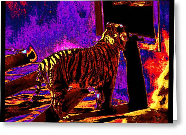 Tiger Dream Greeting Cards - Tiger At the Window As I Slept Inside A Dream Greeting Card by Susanne Still