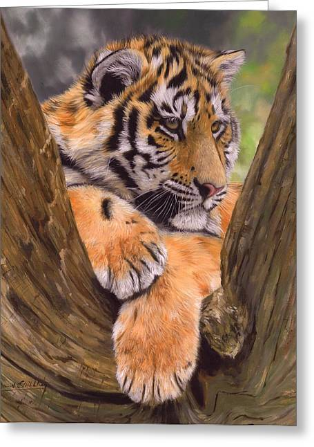 Big Cat Art Greeting Cards - Tiger Cub Painting Greeting Card by David Stribbling