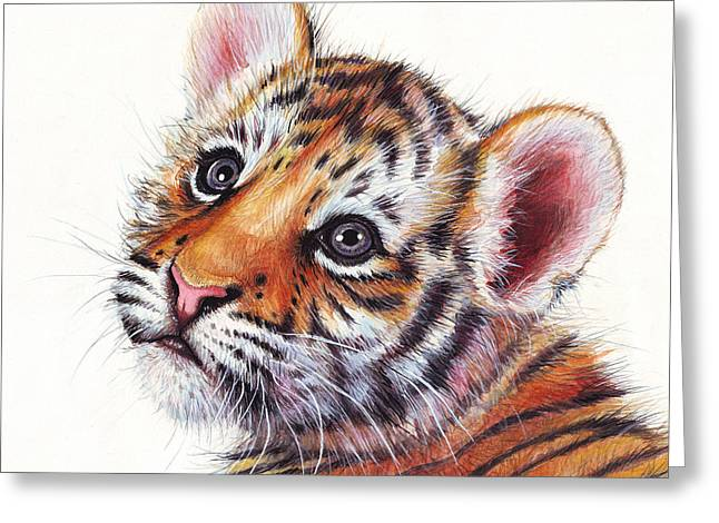 Tiger Illustration Greeting Cards - Tiger Cub Watercolor Painting Greeting Card by Olga Shvartsur