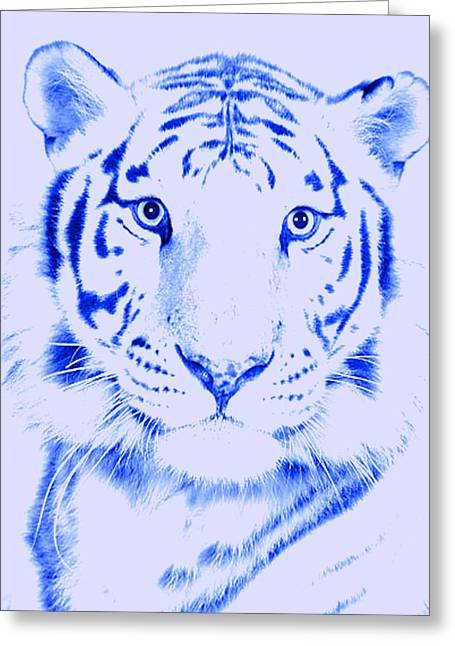 G. Pawer Greeting Cards - Tiger Eye Greeting Card by J D Owen