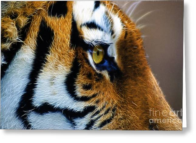 Tiger Fractal Greeting Cards - Tiger Eye Greeting Card by Paul Danaher