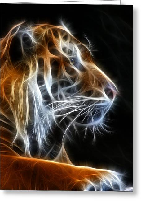 Glowing Mixed Media Greeting Cards - Tiger Fractal 2 Greeting Card by Shane Bechler