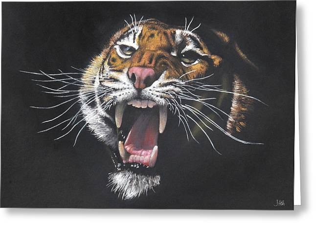 Growling Greeting Cards - Tiger Growl Greeting Card by John Hebb