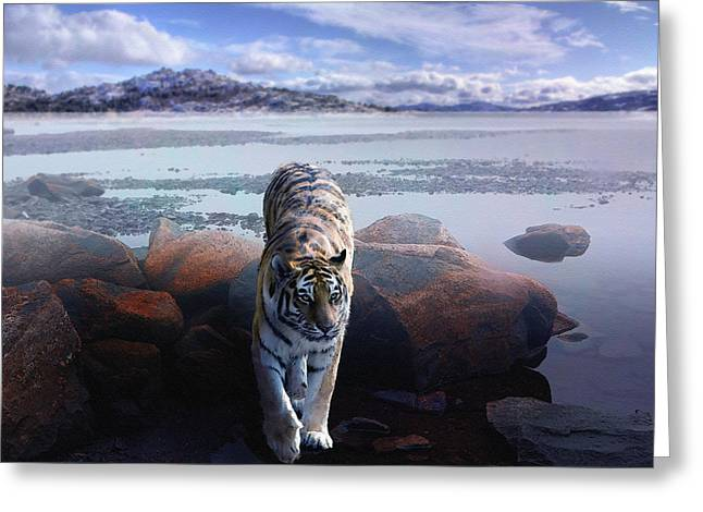 Tiger In A Lake Greeting Card by Pati Photography