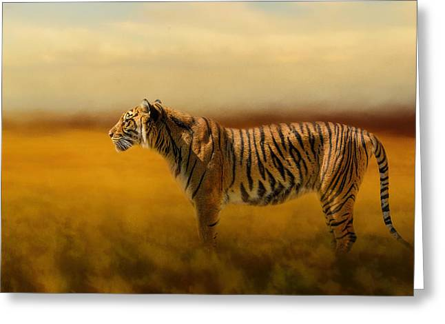 The Tiger Greeting Cards - Tiger In The Golden Field Greeting Card by Jai Johnson