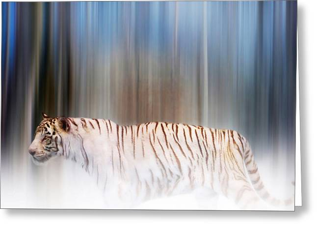 Valzart Greeting Cards - Tiger in the mist Greeting Card by Valerie Anne Kelly