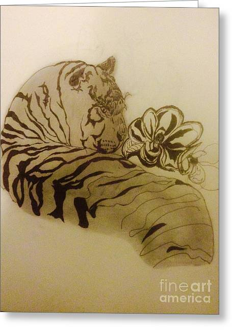 Indian Ink Mixed Media Greeting Cards - Tiger in the shade Greeting Card by Franky A HICKS