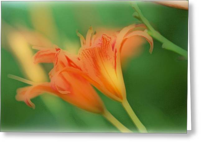Maggie Vlazny Greeting Cards - Tiger Lilies in a Dream Greeting Card by Maggie Vlazny