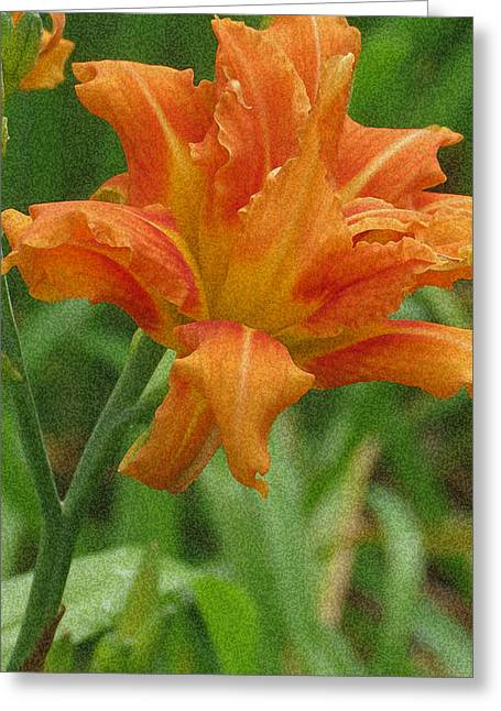 Moist Digital Art Greeting Cards - Tiger Lily Greeting Card by Kay Novy