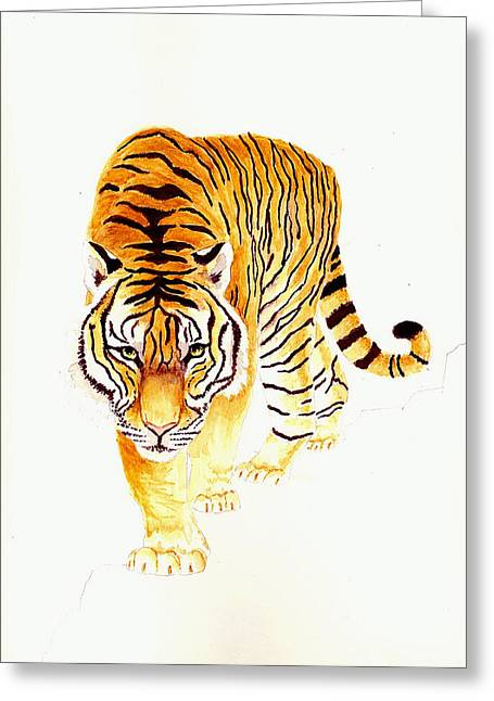 Tiger Illustration Greeting Cards - Tiger Greeting Card by Michael Vigliotti