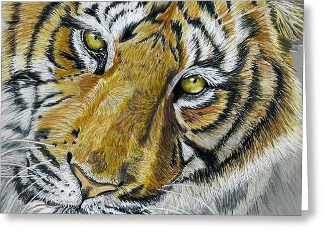 Tiger Painting Greeting Card by Michelle Wrighton