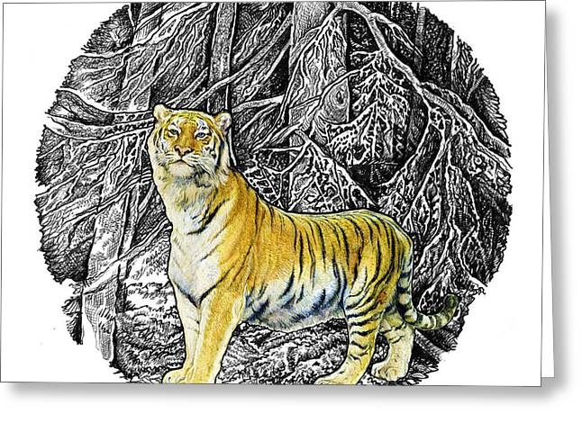 Winter Prints Drawings Greeting Cards - Tiger Greeting Card by Natalie Berman