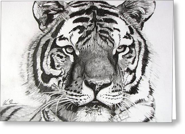 Kevin F Heuman Greeting Cards - Tiger on Piece of Paper Greeting Card by Kevin F Heuman