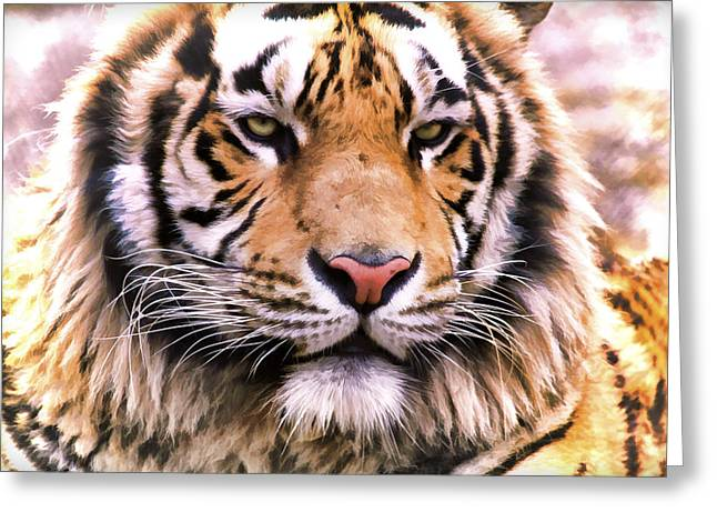 Bobcats Photographs Greeting Cards - Tiger Paint Greeting Card by Athena Mckinzie