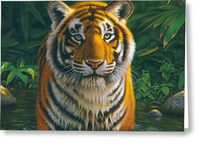 Tiger Pool Greeting Card by MGL Studio - Chris Hiett