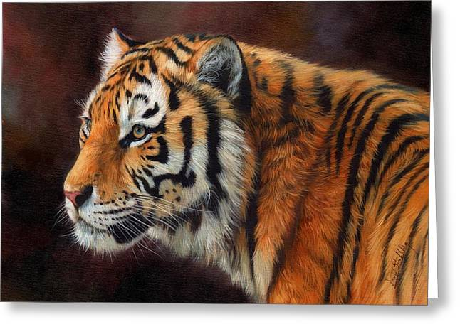 Tigers Greeting Cards - Tiger Portrait  Greeting Card by David Stribbling