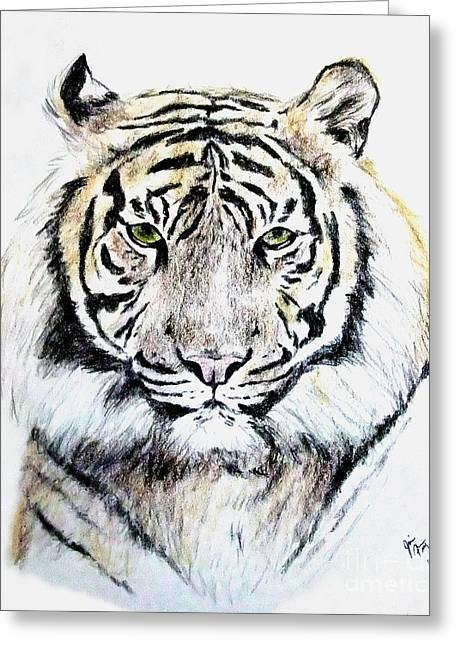 San Francisco Bay Drawings Greeting Cards - Tiger Portrait Greeting Card by Jim Fitzpatrick
