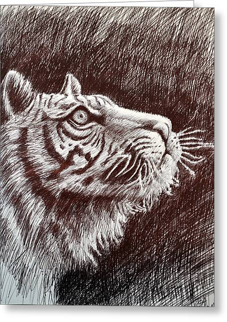 The Tiger Drawings Greeting Cards - Tiger Profile Greeting Card by Rick Hansen