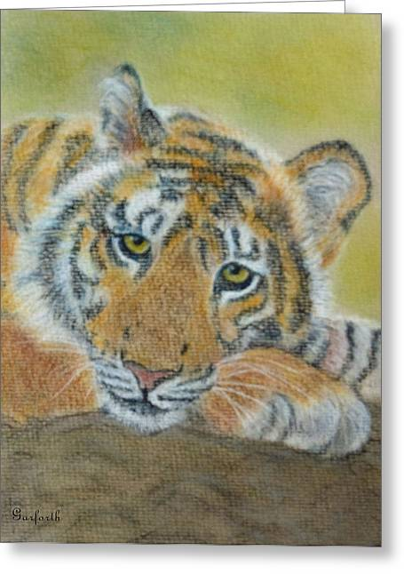 Yggdrasil Greeting Cards - Tiger Resting Greeting Card by Yggdrasil Art
