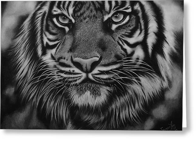 Samantha Greeting Cards - Tiger Greeting Card by Samantha Howell