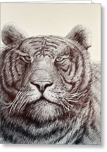 King Of Beast Prints Greeting Cards - Tiger Stripes Greeting Card by Rick Hansen