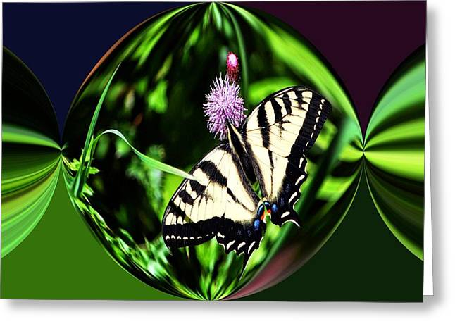 Tiger Swallowtail Digital Art Greeting Cards - Tiger Swallowtail Digital art Greeting Card by Don Mann
