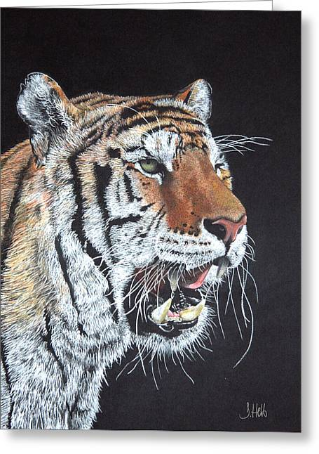 Growling Greeting Cards - Tiger Tiger Burning Bright Greeting Card by John Hebb