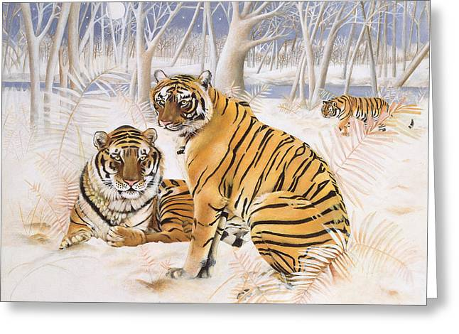 Wildcat Greeting Cards - Tigers In The Snow, 2005 Acrylic On Canvas Greeting Card by E.B. Watts