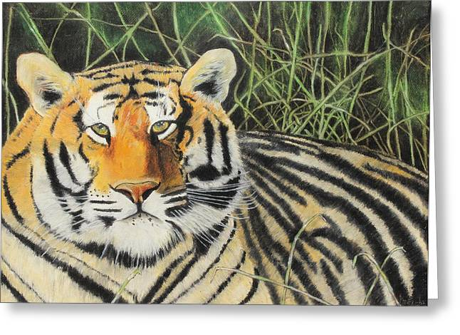 Hunter Pastels Greeting Cards - Tigress Greeting Card by Jeanne Fischer