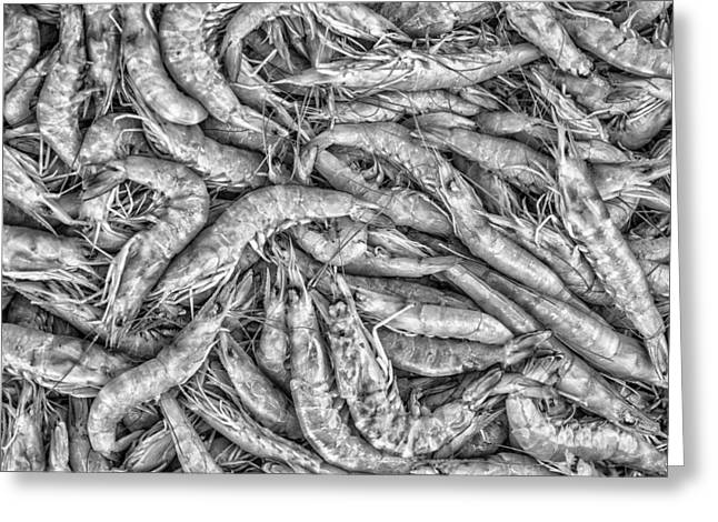 Jambalaya Greeting Cards - Tile of shrimps Greeting Card by Dobromir Dobrinov