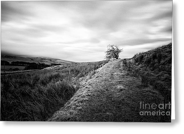Moorlands Greeting Cards - Till the world stops turning Greeting Card by John Farnan
