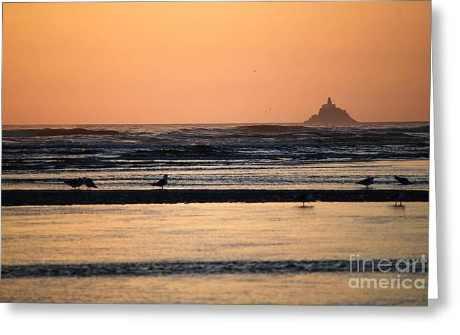 Pacific Ocean Prints Greeting Cards - Tillamook Head Lighthouse Greeting Card by Sharon Elliott