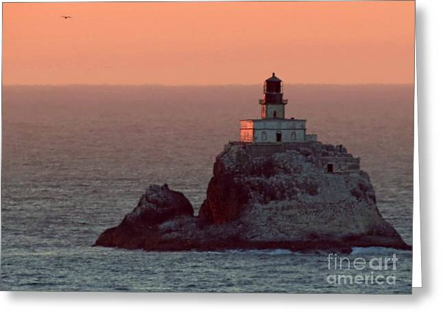Tillamook Rock Lighthouse Greeting Card by Chris Anderson