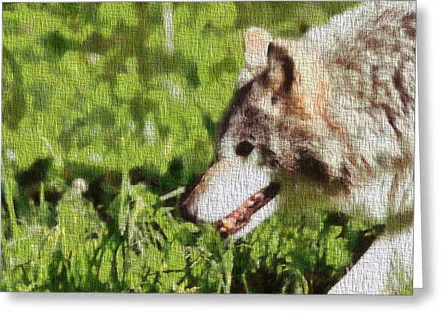 Stood Mixed Media Greeting Cards - Timber Wolf Portrait On Canvas Greeting Card by Dan Sproul