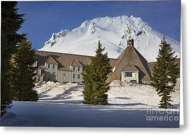 Fir Trees Greeting Cards - Timberline Lodge Greeting Card by Brian Jannsen